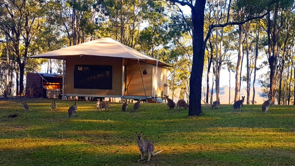 destination-scenic-rim-ketchups-bank-glamping-wallabies