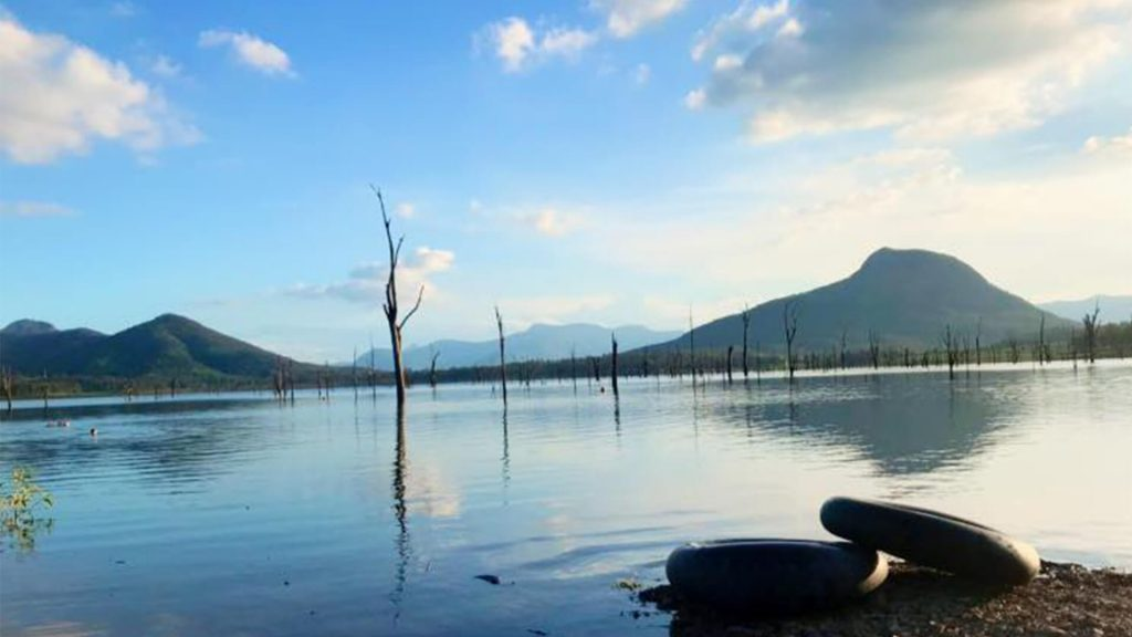 moogerah-lakeside-bush-retreat-accommodation-destination-scenic-rim