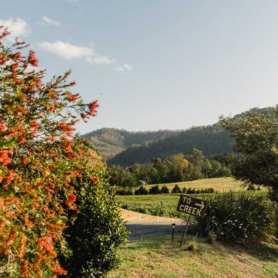destination-scenic-rim-greenlee-farm